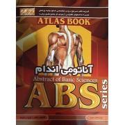 ABS آناتومی اندام