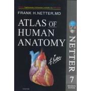 Atlas of Human Anatomy Netter 7th edition 2019 تحریر