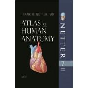 Atlas of human anatomy بدون قاب