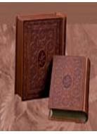 دیوان حافظ جیبی چرم استاد فرشچیان دو زبانه