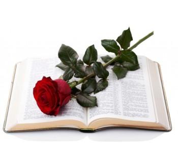 کتاب، لوازم تحریر و هنرclass=